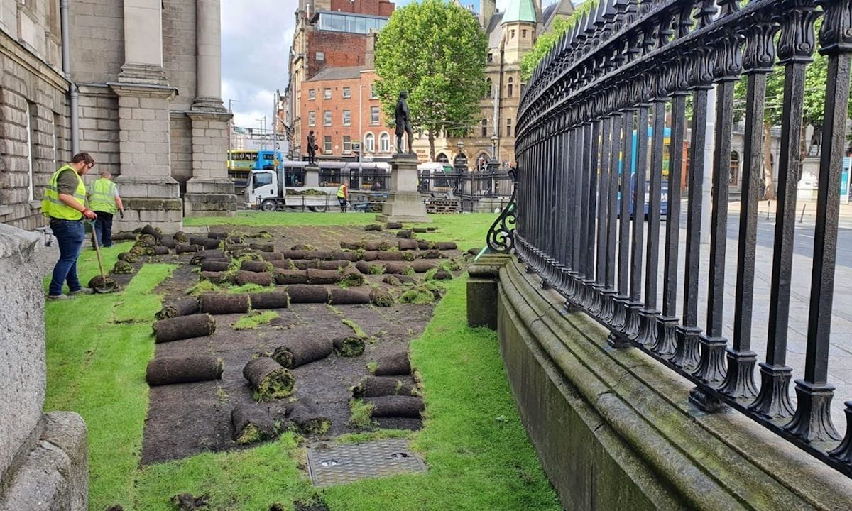 Dublin's Trinity College is converting its front lawn into a wildflower meadow